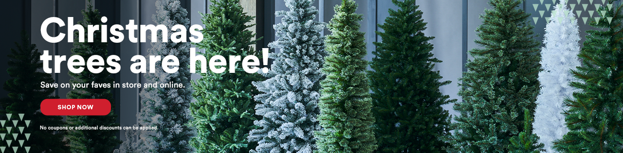 Christmas Trees are here!